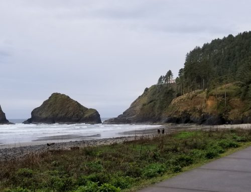 Eugene Coastal Package (2-days / 1-night)